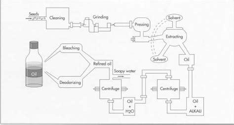 advanced vegetable oil processing   steps