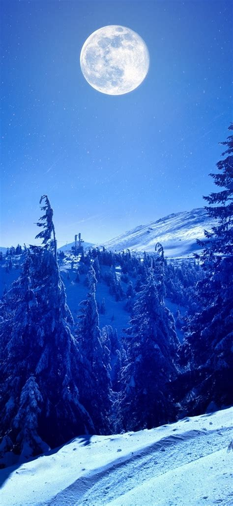 1080x2340 Full Moon Over Winter Forest 1080x2340