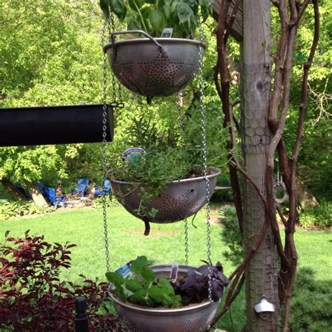 hanging herb garden images glam green ideas