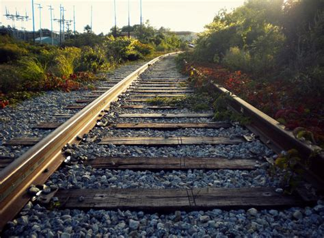 deviantart halun rails light