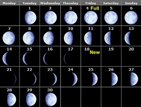 phases   moon  month  month