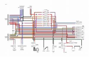 Harley Davidson Fly By Wire Wiring Diagram