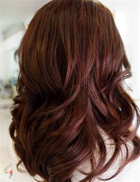 shades  brown hair color    perfect