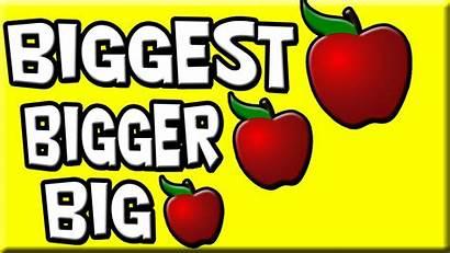 Bigger Biggest Smallest Smaller Kindergarten Learning Teaching