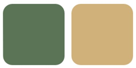 a color specialist in charlotte what do duck prints and