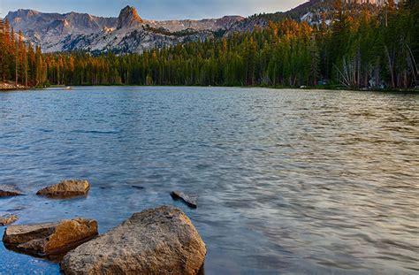 california wilderness northwest allies working