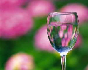 Wine Glass In Front Of Flower Wallpapers - HD Wallpapers 35975