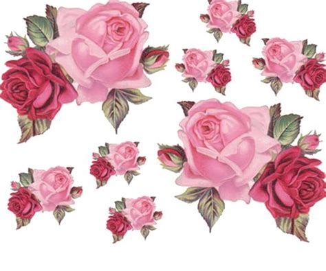 double rose clipart clipground