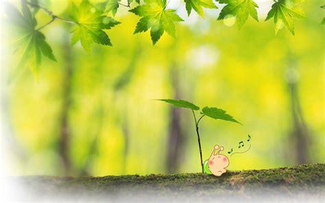 漂亮的春天桌面壁纸图片高清大图预览1440x900_可爱壁纸下载_彼岸桌面