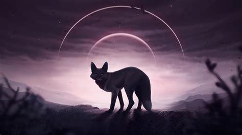 1080p Wolf Wallpaper Hd For Mobile by 1920x1080 Fox Wolf 5k Laptop Hd 1080p Hd 4k