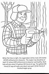 Maple Syrup Coloring Google Sugar Crafts Bush Leaf sketch template