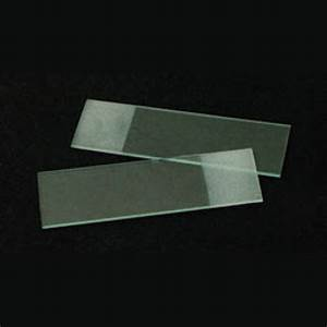 Glass Slide Images - Reverse Search