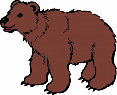 Bear Clipart Clipground