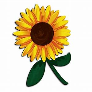 Funny Pictures  Sunflower Amazing Picture For Kids