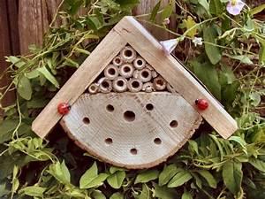 Nichoir A Insecte : maison insectes petits gtes insectes ~ Premium-room.com Idées de Décoration