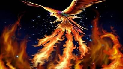Phoenix Wallpapers Bird Cave