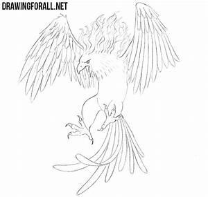 Phoenix Bird Drawing How To Draw A Phoenix Drawingforall Net
