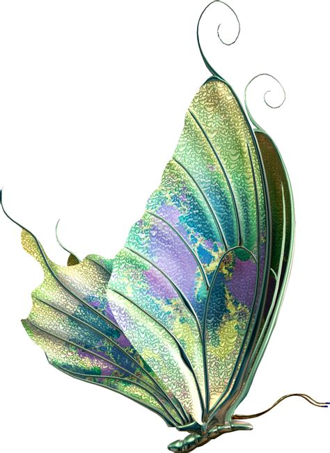 beautiful butterfly images   fiesta  english
