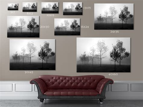 print sizes  prices cleary creative photography