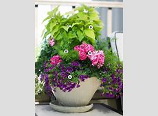 Perfect flower containers for your geraniums – Landscaping