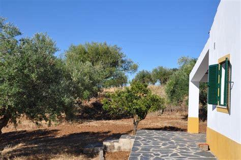 huis te koop 1 hectare 1 hectare land te koop in portugal toekomstboeren