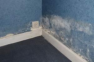 Humidité Mur Extérieur : dryzone finition des murs ~ Premium-room.com Idées de Décoration
