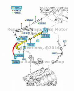 Brand New Oem Heater Core Inlet Hose 2011