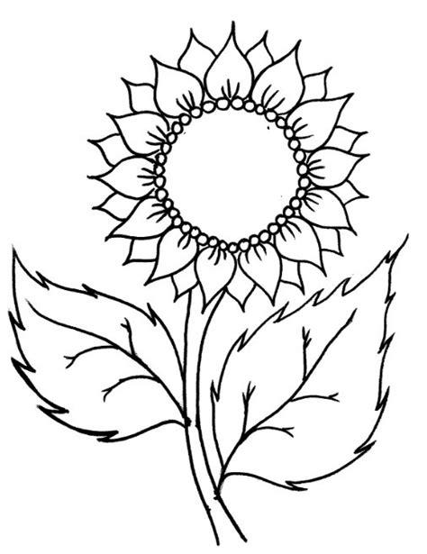 30 Contoh Gambar Bunga Matahari Sketsa Bunga Cari Gambar Keren Hd