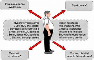Targeting Abdominal Obesity And The Metabolic Syndrome To
