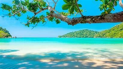 Sea Beach Tropical Tree 5k Sand Iphone
