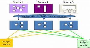 Data Standardization  U2013 Ohdsi