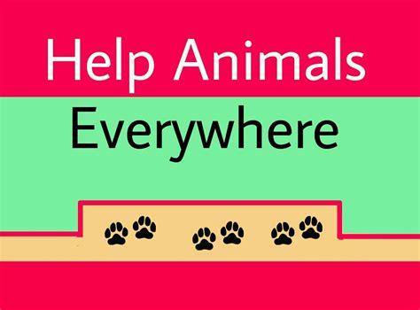 how do animals help 7 ways to help save animals please hear their cry