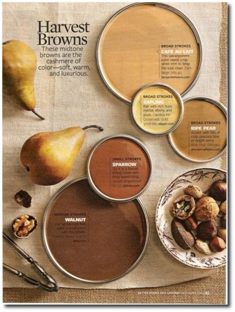 best 25 fall paint colors ideas on fall wine