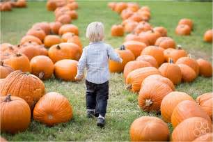 Pumpkin Farms In Illinois Best by Pumpkin Patches Amp Apple Orchards
