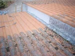 Nettoyage Toiture Karcher : nettoyeur haute pression toiture nettoyage d moussage de toitures la haute pression avec robot ~ Dallasstarsshop.com Idées de Décoration