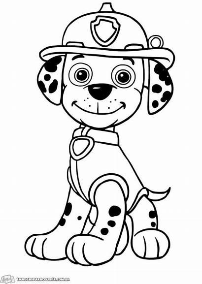 Patrol Paw Coloring Marshall Canina Colorir Patrulha