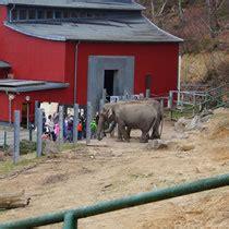 bilder zoo neunkirchen insideholidaysde