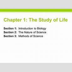 Chapter 1 The Study Of Life  Ppt Video Online Download