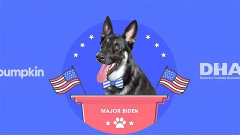Joe Biden's dog Major, adopted from shelter, gets own ...