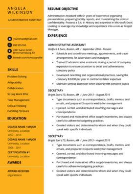 modern resume templates    resume genius