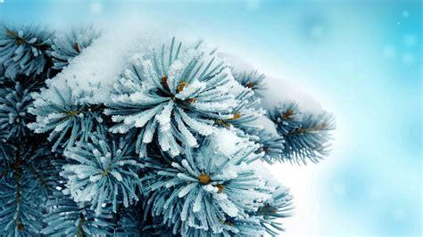 Sfondi Dell'epifania Ed Invernali Per Il Vostro Desktop