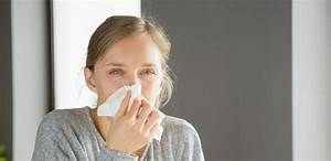 Ultimate Guide To Hay Fever