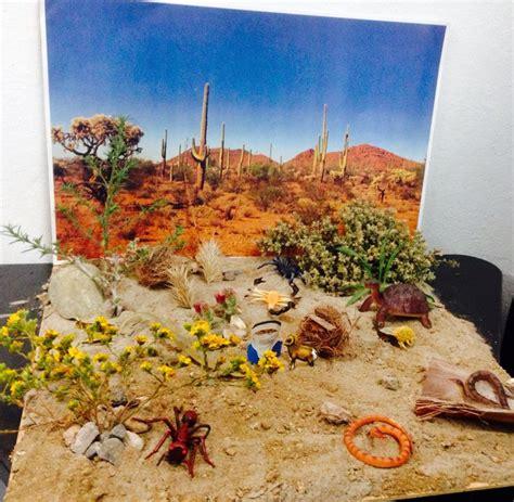 como hacer maqueta del desierto maqueta desierto escuela pinterest