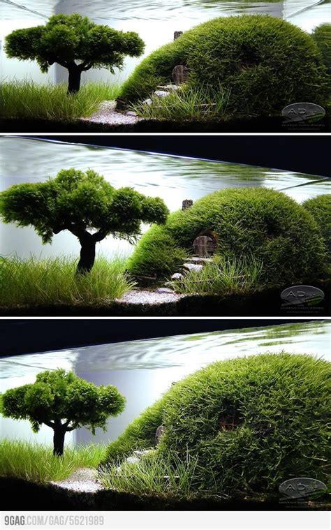 cool aquascapes 25 best aquascaping ideas on