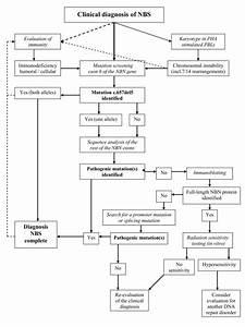 Diagnostic Flow