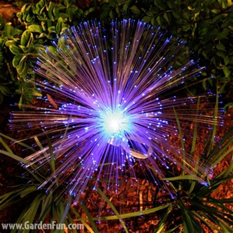 solar fiber optic garden stakes 2 pack only 24 99 at