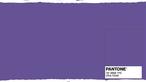 The Color by Purple Is The Colour For February In Fact It Is The