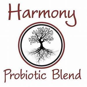 Created With Thoughtfulness And Care  Harmony Will Help