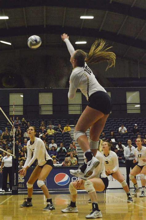volleyball sweeps   win  virginia  pitt news