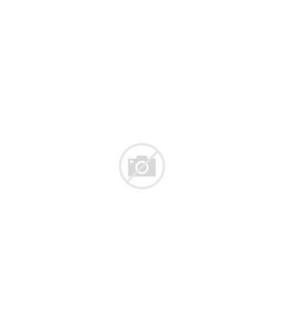 Nike Pants Track Navy